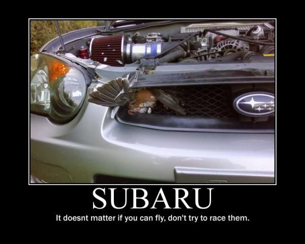 Car Memes Page 4 Subaru Impreza Wrx Sti Forums