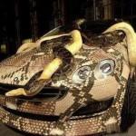 Snakeskin Car