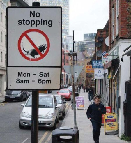 car-humor-joke-funny-traffic-road-street-signs-sign-no-stopping