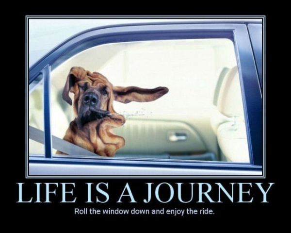 Life Is A Journey Car Humor