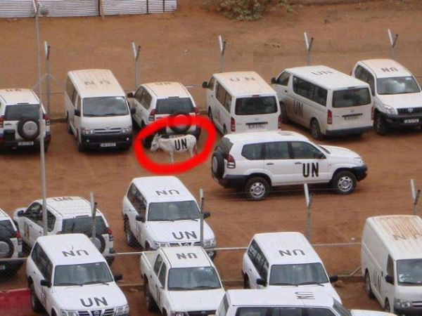 United Nations Vehicles Only - Car humor