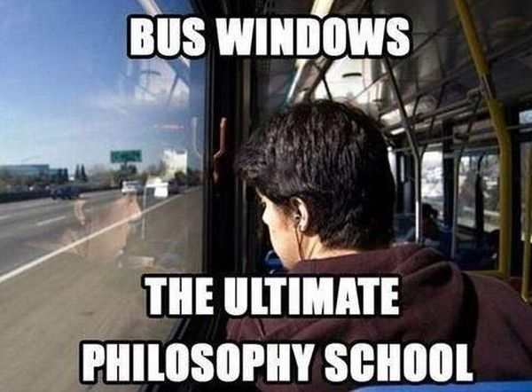 Bus Windows