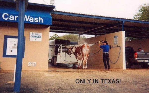 Only In Texas - Car humor