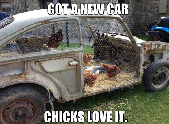 Chicks Love New Cars