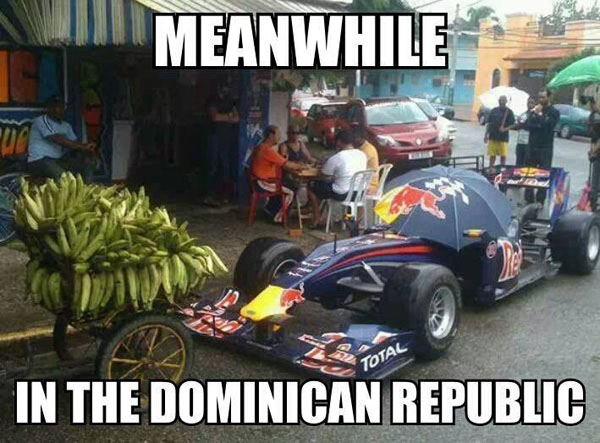 cat-humor-funny-Meanwhile-in-the-dominican-republic