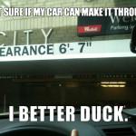 I Better Duck