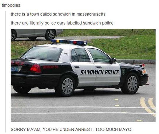 Sandwich Police Saves The Day Again