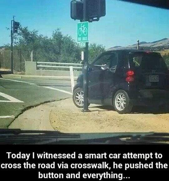 He's Doing It The Smart Way
